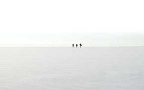 Picture sea, shore, silhouettes