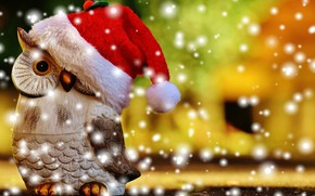 Picture owl, bird, Christmas, New year, cap, figure