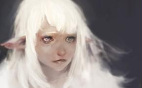 Picture sadness, eyes, Keunju Kim, rabbit eyes, snowelf by, white hair silver eyes