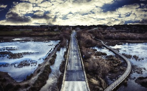 Picture road, bridge, swamp