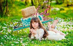Wallpaper hay, summer, nature, car, girl, flowers