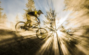 Wallpaper race, bike, sport