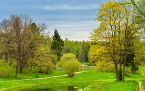 Picture greens, the sky, grass, trees, Park, spring, Saint Petersburg, Russia, river, benches, path, Pavlovsk, Pavlovsk