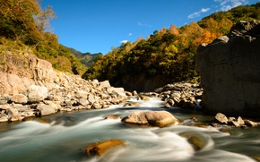 Picture forest, mountains, stones, stream, river