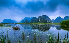 Picture grass, mountains, fog, river, rocks, reed, Vietnam