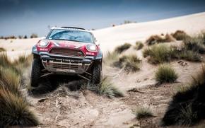 Picture Red, Mini, Sport, Desert, Race, Lights, Rally, Dakar, Dakar, SUV, Rally, The front, X-Raid Team, …