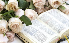Picture flowers, roses, Book, reading