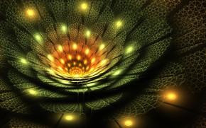 Picture flower, pattern, petals, fractal, the volume