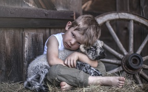 Picture mood, boy, wheel, hay, sheep, lamb