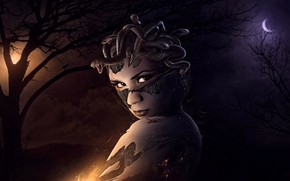 Wallpaper fiction, the moon, werewolf, background, light, forest, Medusa, night, figure, picture, art, the transformation, magic, ...