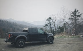 Picture car, machine, forest, SUV, ford, Ford, raptor, pickup, jeep, Raptor, woods, pickup
