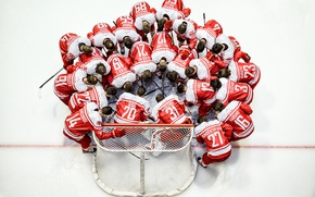 Picture sport, team, hockey
