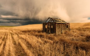 Picture field, clouds, nature, house