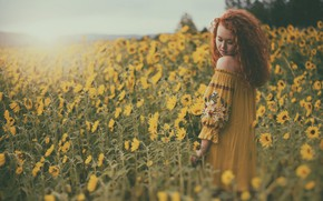 Picture field, sunflowers, mood, red, redhead