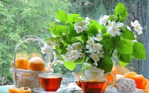 Picture summer, glass, photo, rain, tea, bouquet, kettle, window, the tea party, Cup, fruit, still life, …
