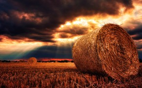 Picture summer, the sky, landscape, nature, harvest, panorama, straw, gold, cereals, sunbeam