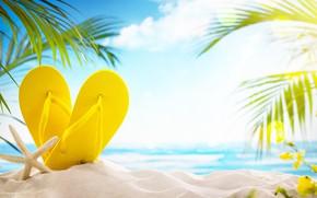 Wallpaper sand, sea, beach, summer, the sun, palm trees, stay, summer, beach, vacation, sand, slates, vacation, ...