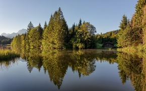 Picture forest, summer, lake, house