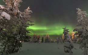 Picture snow, landscape, night, nature, Northern lights, North, tree