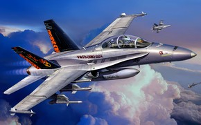 Picture attack, McDonnell Douglas, F/A-18D, American carrier-based fighter-bomber, Hornet Wild Weasel, double combat trainer version of …