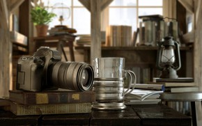 Picture glass, table, books, the camera, IN A PRIVATE LIBRARY