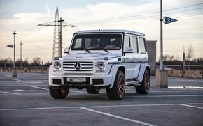 Picture Mercedes, AMG, G55, White, Prior Design