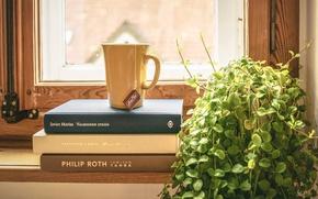 Picture books, window, Cup, pot, tea fragrant, podokonnik