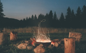 Picture forest, the sky, stars, trees, stones, the evening, ate, the fire, pine, deck