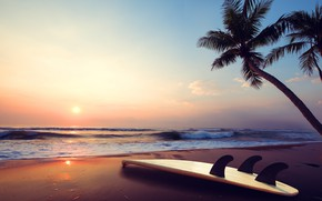 Picture sea, sunset, Palma, Nature