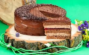 Picture chocolate, cake, layers, cream, piece