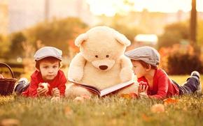 Picture the sun, children, stay, apples, toy, apple, bear, book, bear, boys, boys, children, Teddy