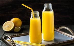 Picture orange, juice, bottle, drink, tray, fresh