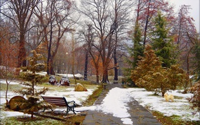 Picture Winter, Trees, Snow, Park, Winter, Park, Snow, Trees