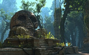 Picture forest, skull, Lost Civilization