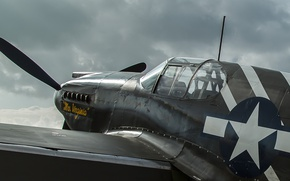 Picture Mustang, fighter, long-range, P-51A