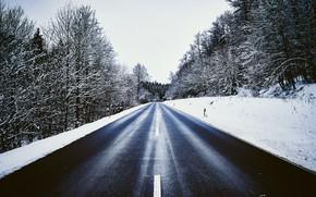 Wallpaper winter, forest, road