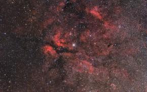 Picture Emission nebula, Sadr Region, 20160831