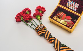 Picture flowers, holiday, victory day, St. George ribbon, May 9, clove