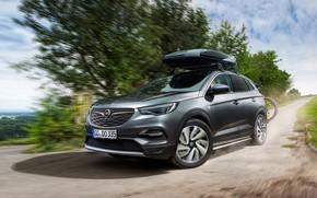 Picture Opel, 2018, Accessorized, Grandland X, Turbo D