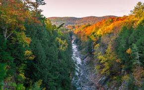Picture autumn, trees, mountains, river, forest