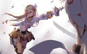 Picture girl, weapons, armor, anime, art