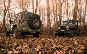 Picture trees, foliage, bumper, 4x4, Jeep, Willys MB, the soft top, Geiger-Willys Limited Edition, spare wheel
