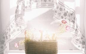 Picture light, flowers, window