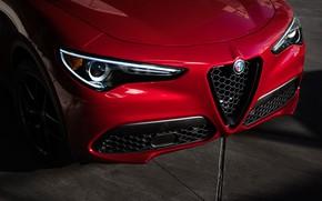 Picture lights, Alfa Romeo, front view, 2018, crossover, Stelvio, Black Edition