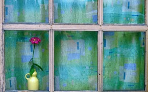 Picture flower, house, window