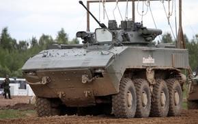 "Picture Boomerang, on the platform 7829 ""boomerang"", manned combat unit Б05Я01 Berezhok, Wheeled infantry fighting vehicle, …"