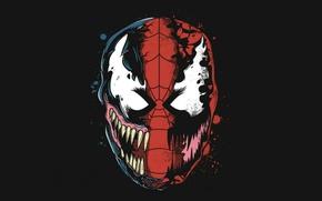 Picture Art, black background, Spider-Man, Venom, Carnage