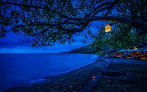 Picture sea, branches, lights, tropics, tree, coast, foliage, the evening, horizon, Indonesia, lights, resort, Bali