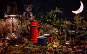 Wallpaper stones, fern, a month, leaves, lamp, burner, mugs, watch, toy, bear