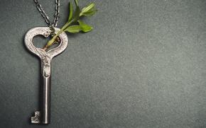 Wallpaper branch, key, love, heart, key, romantic